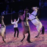 """Фоторепортаж: EQUITANA 2015 - HOP-TOP-SHOW """"Amirando"""" - фото IMG_9532_новый-размер_wm-200x200, главная Разное Фото , конный журнал EquiLIfe"""