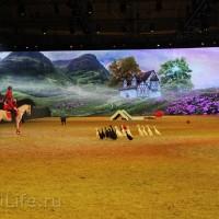 """Фоторепортаж: EQUITANA 2015 - HOP-TOP-SHOW """"Amirando"""" - фото IMG_9553_новый-размер_wm-200x200, главная Разное Фото , конный журнал EquiLIfe"""