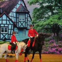"""Фоторепортаж: EQUITANA 2015 - HOP-TOP-SHOW """"Amirando"""" - фото IMG_9596_новый-размер_wm-200x200, главная Разное Фото , конный журнал EquiLIfe"""
