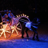 """Фоторепортаж: EQUITANA 2015 - HOP-TOP-SHOW """"Amirando"""" - фото IMG_9675_новый-размер_wm-200x200, главная Разное Фото , конный журнал EquiLIfe"""