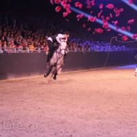 """Фоторепортаж: EQUITANA 2015 - HOP-TOP-SHOW """"Amirando"""" - фото IMG_9850_новый-размер_wm-200x200, главная Разное Фото , конный журнал EquiLIfe"""