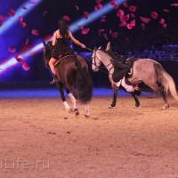 """Фоторепортаж: EQUITANA 2015 - HOP-TOP-SHOW """"Amirando"""" - фото IMG_9853_новый-размер_wm-200x200, главная Разное Фото , конный журнал EquiLIfe"""