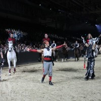 """Фоторепортаж: EQUITANA 2015 - HOP-TOP-SHOW """"Amirando"""" - фото IMG_9995_новый-размер_wm-200x200, главная Разное Фото , конный журнал EquiLIfe"""