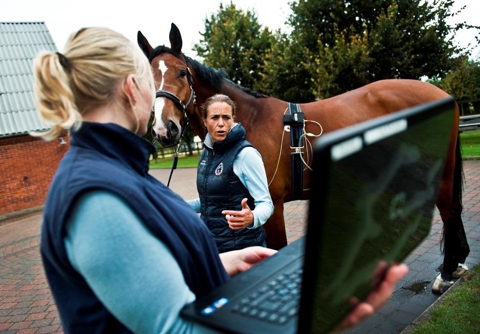 Научно-практический семинар для ветеринарных врачей - фото , Новости , конный журнал EquiLIfe