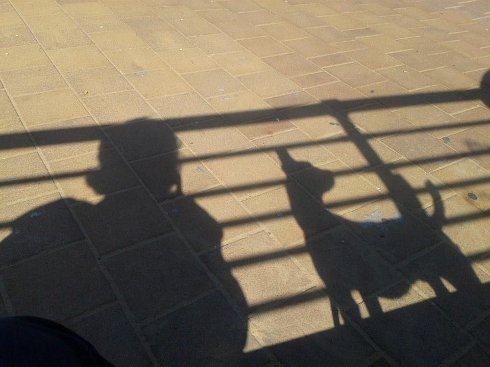 """Софья Баскина: """"Мне интересна личность животного"""" - фото 1620429_10203074805328661_414158045_n, главная Интервью Поведение лошади , конный журнал EquiLIfe"""