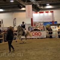 EQUITANA 2015: в лицах и стендах - фото IMG_7163_новый-размер_wm-200x200, главная Разное События Фото , конный журнал EquiLIfe