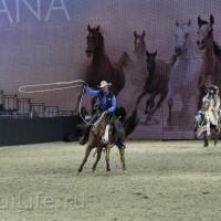 EQUITANA 2015: в лицах и стендах - фото IMG_7552_новый-размер_wm-200x200, главная Разное События Фото , конный журнал EquiLIfe