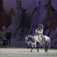 EQUITANA 2015: в лицах и стендах - фото IMG_7553_новый-размер_wm-200x200, главная Разное События Фото , конный журнал EquiLIfe
