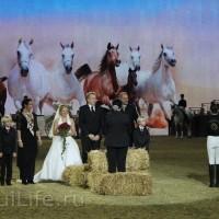 EQUITANA 2015: в лицах и стендах - фото IMG_7612_новый-размер_wm-200x200, главная Разное События Фото , конный журнал EquiLIfe
