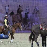 EQUITANA 2015: в лицах и стендах - фото IMG_8525_новый-размер_wm-200x200, главная Разное События Фото , конный журнал EquiLIfe