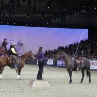 EQUITANA 2015: в лицах и стендах - фото IMG_8533_новый-размер_wm-200x200, главная Разное События Фото , конный журнал EquiLIfe