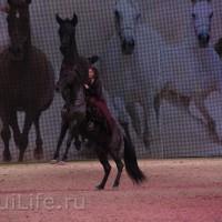EQUITANA 2015: в лицах и стендах - фото IMG_8583_новый-размер_wm-200x200, главная Разное События Фото , конный журнал EquiLIfe