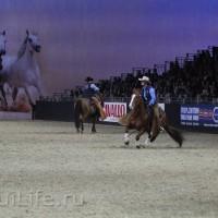 EQUITANA 2015: в лицах и стендах - фото IMG_8643_новый-размер_wm-200x200, главная Разное События Фото , конный журнал EquiLIfe