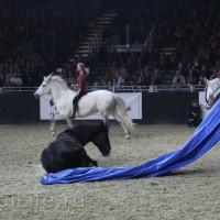EQUITANA 2015: в лицах и стендах - фото IMG_8927_новый-размер_wm-200x200, главная Разное События Фото , конный журнал EquiLIfe