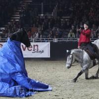 EQUITANA 2015: в лицах и стендах - фото IMG_8939_новый-размер_wm-200x200, главная Разное События Фото , конный журнал EquiLIfe