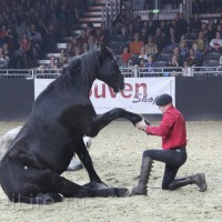 EQUITANA 2015: в лицах и стендах - фото IMG_8959_новый-размер_wm-200x200, главная Разное События Фото , конный журнал EquiLIfe