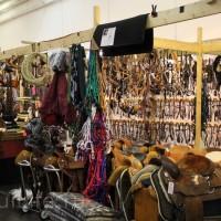 EQUITANA 2015: в лицах и стендах - фото IMG_8970_новый-размер_wm-200x200, главная Разное События Фото , конный журнал EquiLIfe