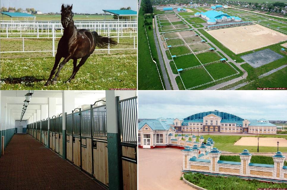 Ещё 7 конюшен мечты! - фото -кони, главная Конюшня Разное Фото , конный журнал EquiLIfe