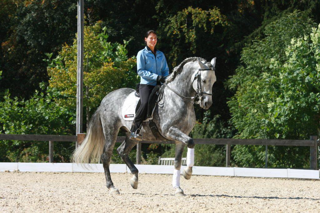Аня Беран: надо работать над всеми аспектами своей жизни - фото BILD_8528-A, Аня Беран главная Интервью , конный журнал EquiLIfe