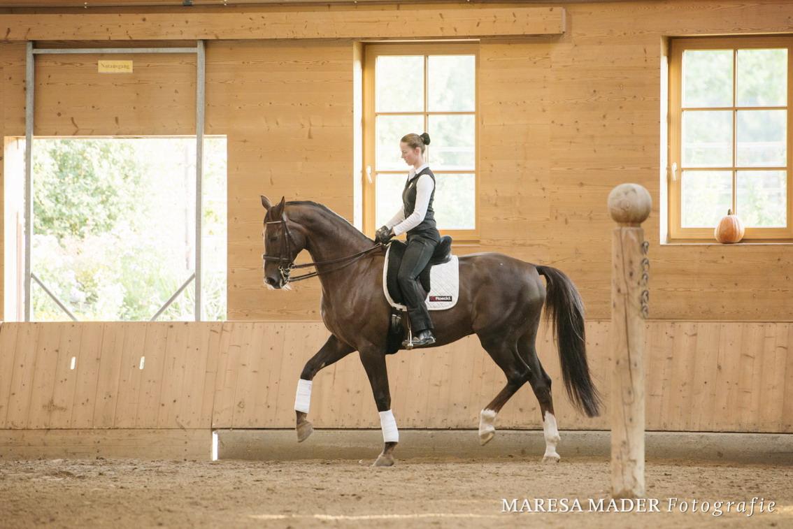 Аня Беран: надо работать над всеми аспектами своей жизни - фото DSC6737, Аня Беран главная Интервью , конный журнал EquiLIfe
