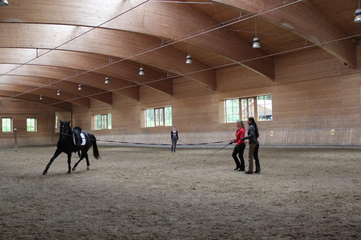 Аня Беран: надо работать над всеми аспектами своей жизни - фото IMG_0192, Аня Беран главная Интервью , конный журнал EquiLIfe