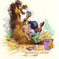 Забавные пони Нормана Телвелла - фото 1460293_539723829445729_809882039_n-200x200, главная Разное Фото , конный журнал EquiLIfe