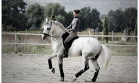 Фото: cheval.com