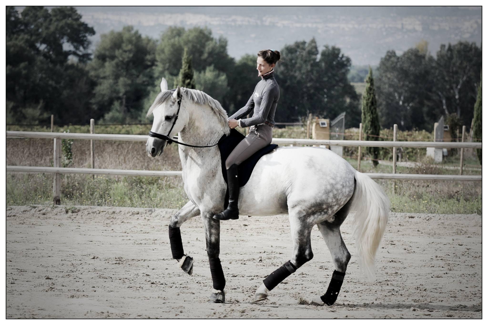 Ализе Фромен: в конном мире сегодня больше радикально настроенных людей - фото 1cheval-com, главная Интервью , конный журнал EquiLIfe