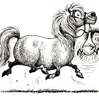 Забавные пони Нормана Телвелла - фото 6a1879655756cbddc3ed4ae46332230f-200x200, главная Разное Фото , конный журнал EquiLIfe