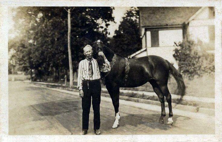 Капитан, конь с человеческим разумом - фото 7bba14e3febeec6357e126e055ec0fad, главная Конные истории Разное , конный журнал EquiLIfe