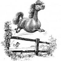 Забавные пони Нормана Телвелла - фото 7f61a1753006d2e58d22d1818fbf7ef9-200x200, главная Разное Фото , конный журнал EquiLIfe