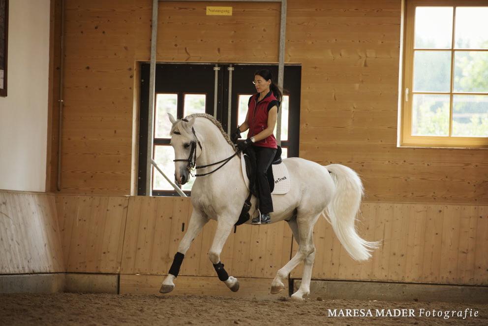 Аня Беран отвечает на вопросы читателей EquiLife.ru - фото DSC1328, Аня Беран главная Интервью Тренинг , конный журнал EquiLIfe