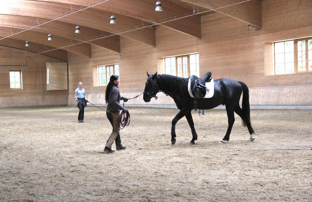 Аня Беран отвечает на вопросы читателей EquiLife.ru - фото IMG_0191, Аня Беран главная Интервью Тренинг , конный журнал EquiLIfe