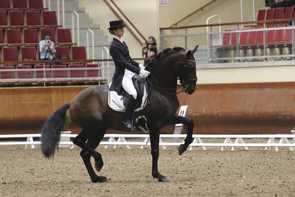 Ализе Фромен: в конном мире сегодня больше радикально настроенных людей - фото naxos-dressage, главная Интервью , конный журнал EquiLIfe