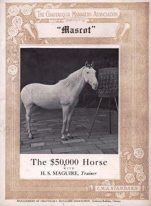 Маскот, конь-интеллектуал за 50 000 долларов - фото 6b539e08a13b453ab04c982378b2fd0f, главная Конные истории Разное , конный журнал EquiLIfe