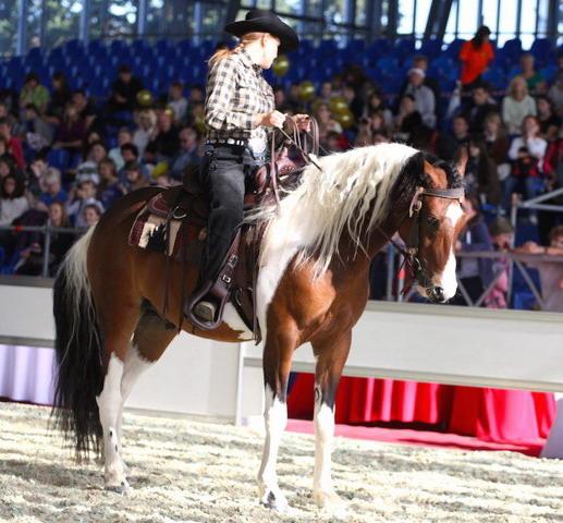 «Конная Россия» - в новом доме - фото IMG_6742, главная Новости , конный журнал EquiLIfe