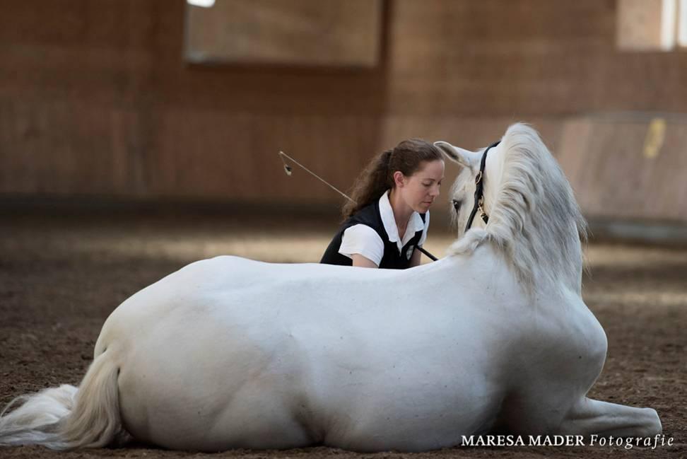 Интервью с ученицей Ани Беран - Верой Мундерло  (Vera Munderloh) - фото image001, Аня Беран главная Интервью , конный журнал EquiLIfe
