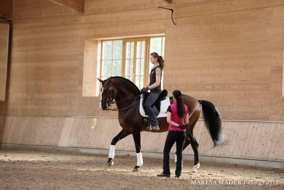 Интервью с ученицей Ани Беран - Верой Мундерло  (Vera Munderloh) - фото image003, Аня Беран главная Интервью , конный журнал EquiLIfe