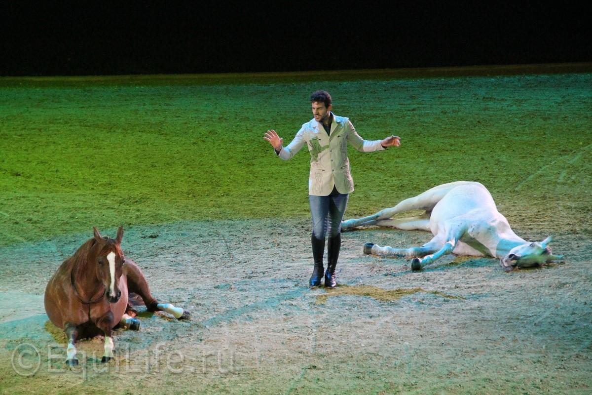 """Санти Серра Кэмпс: """"Еще до того, как я научился ходить, мой отец учил меня сидеть в седле"""" - фото IMG_7904_wm, главная Интервью Разное , конный журнал EquiLIfe"""
