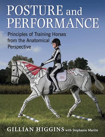 Тренинг лошади  точки зрения анатомии. Новая книга - фото PaP, главная Новости , конный журнал EquiLIfe
