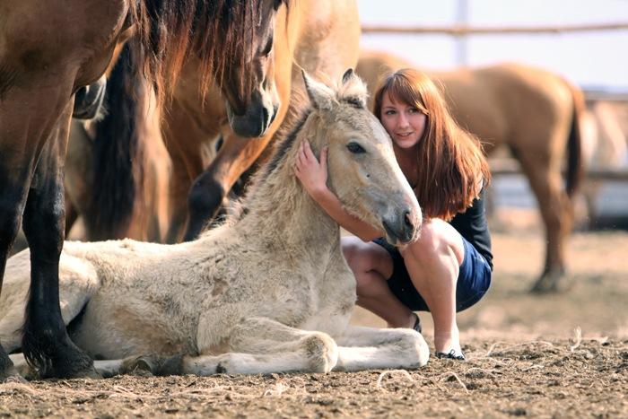 Валерия Короткевич: Моя анималистика - фото y_9a135ff8, главная Интервью Фото , конный журнал EquiLIfe