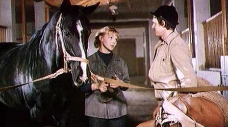 ТОП-10 художественных кинофильмов о лошадях - фото -и-гранд, Фильмы про лошадей , конный журнал EquiLIfe