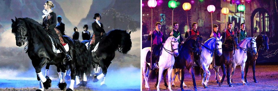 30-31 января 2016г. шоу Apassionata в Хельсинки. - фото 4, Новости , конный журнал EquiLIfe