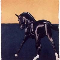 Патрисия Пауэрс (Patricia Powers) - фото Donner-200x200, главная Конные истории Разное , конный журнал EquiLIfe