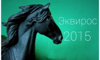 Фото: ВК Мир лошадиной миниатюры