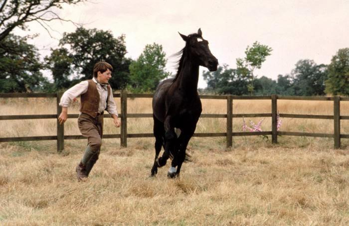 ТОП-10 художественных кинофильмов о лошадях - фото blackbeauty, Фильмы про лошадей , конный журнал EquiLIfe