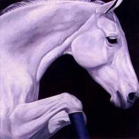 Патрисия Пауэрс (Patricia Powers) - фото curvet-200x200, главная Конные истории Разное , конный журнал EquiLIfe