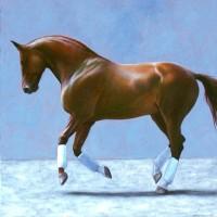 Патрисия Пауэрс (Patricia Powers) - фото grandson72-200x200, главная Конные истории Разное , конный журнал EquiLIfe