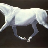 Патрисия Пауэрс (Patricia Powers) - фото impuls-200x200, главная Конные истории Разное , конный журнал EquiLIfe