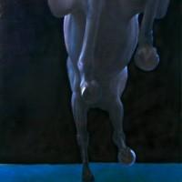 Патрисия Пауэрс (Patricia Powers) - фото isonomy-200x200, главная Конные истории Разное , конный журнал EquiLIfe